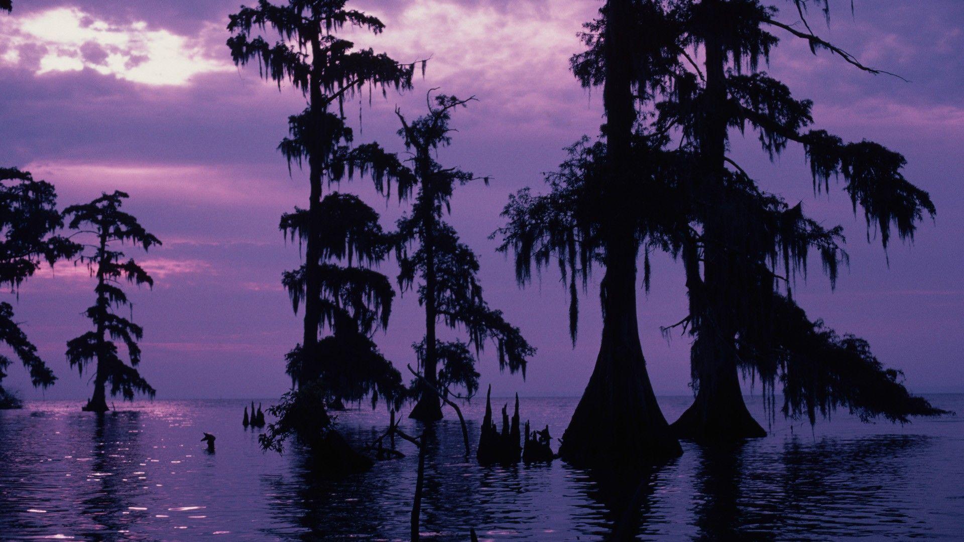 Bayou Sunset Louisiana Landscapes Louisiana bayou Purple sky 1920x1080