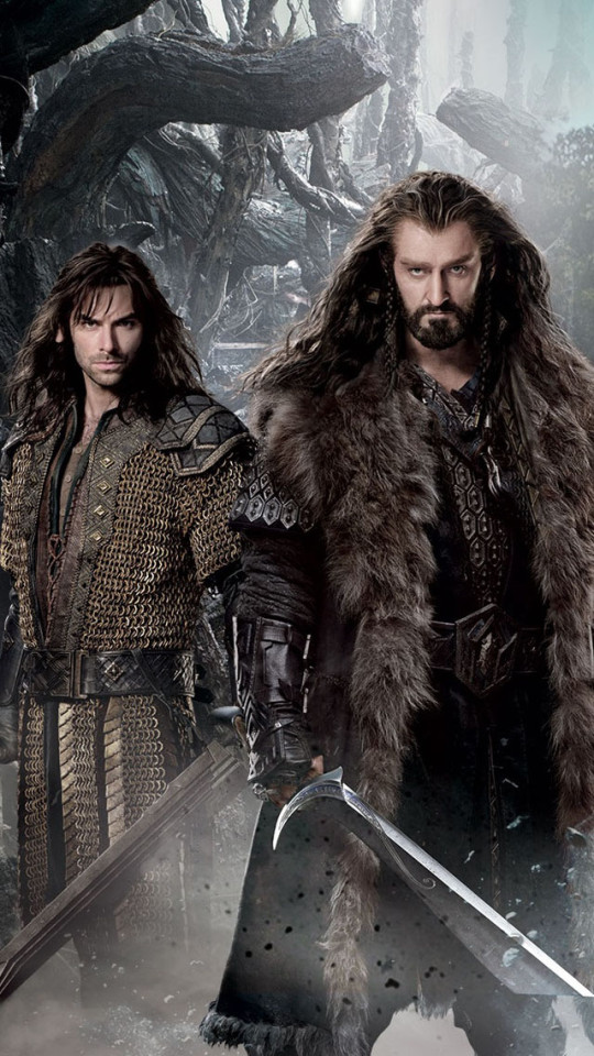 The Hobbit 2 The Desolation of Smaug 2013 Wallpaper   iPhone 540x960