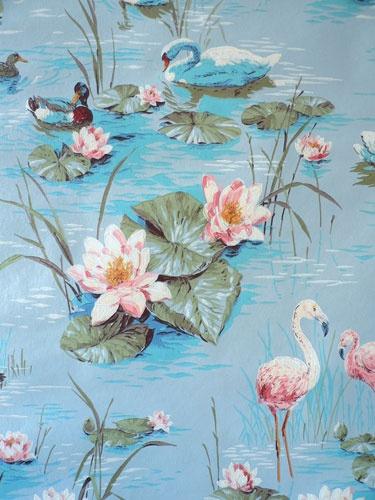 Swan Lake Wallpaper Wallpapersafari