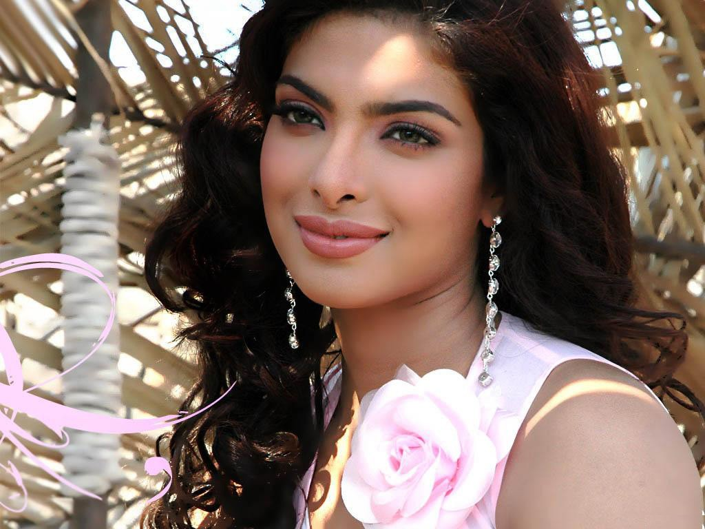 Bollywood Actresses Wallpapers 2014 Sexiest Desktop   HD Pictures 2014 1024x768