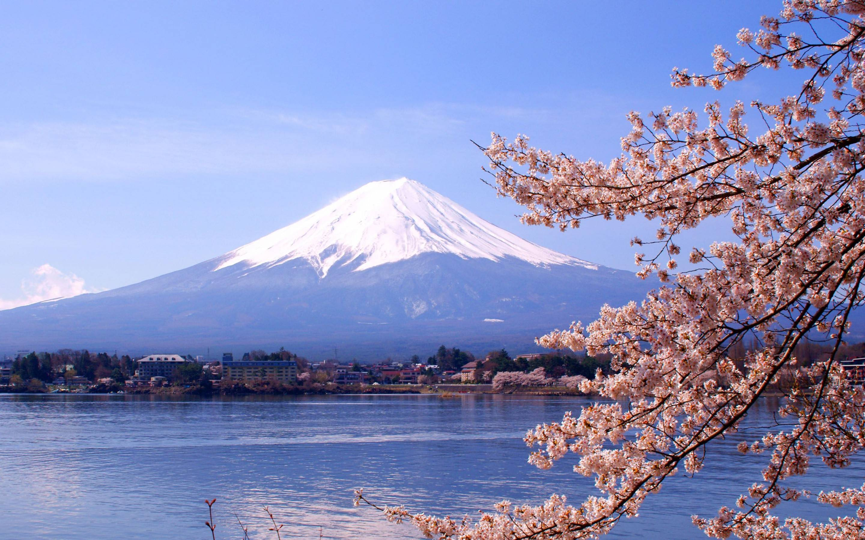 Mount Fuji Wallpapers 2880x1800