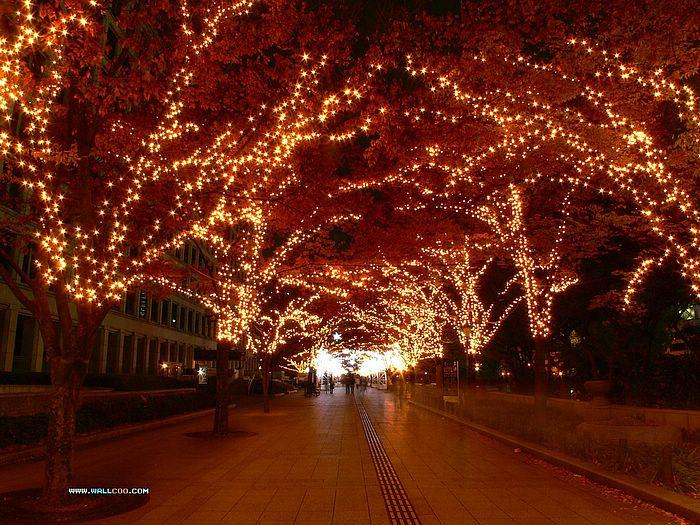 100 Holiday Lights Desktop Wallpaper Hd Wallpapers: [45+] White Christmas Lights Wallpaper On WallpaperSafari