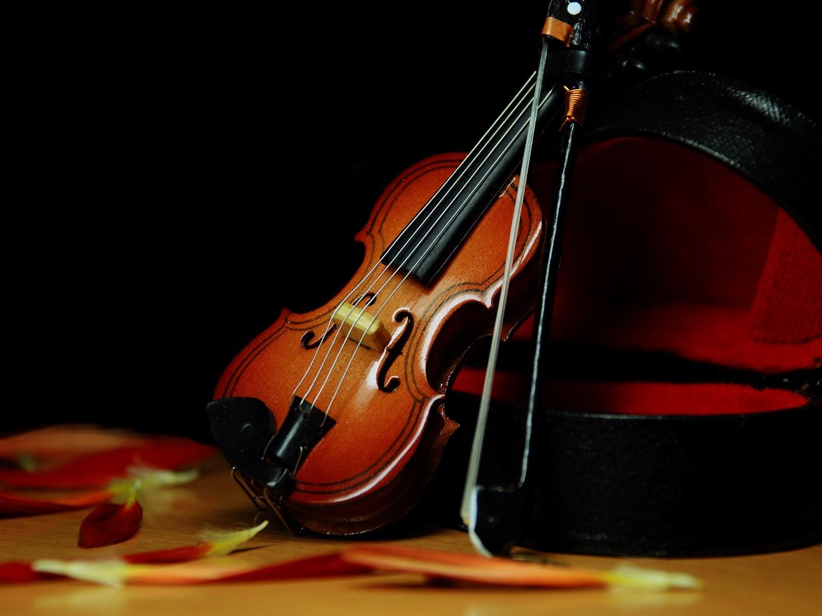 Violin Wallpaper: Beautiful Violin Wallpaper