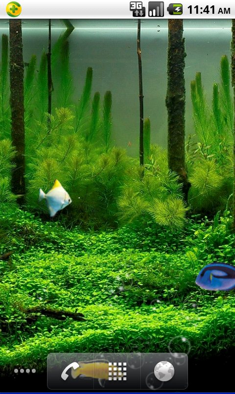 Tags Aquarium live wallpaper mobile theme download Android live 480x803