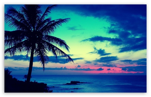 Tropical Paradise Wallpaper High Resolution: High Definition Tropical Wallpapers