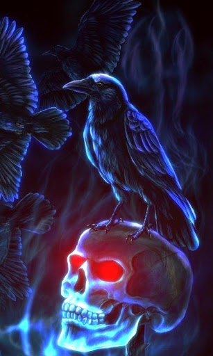 Download Evil Crow Skull Live Wallpaper for android Evil Crow Skull 307x512