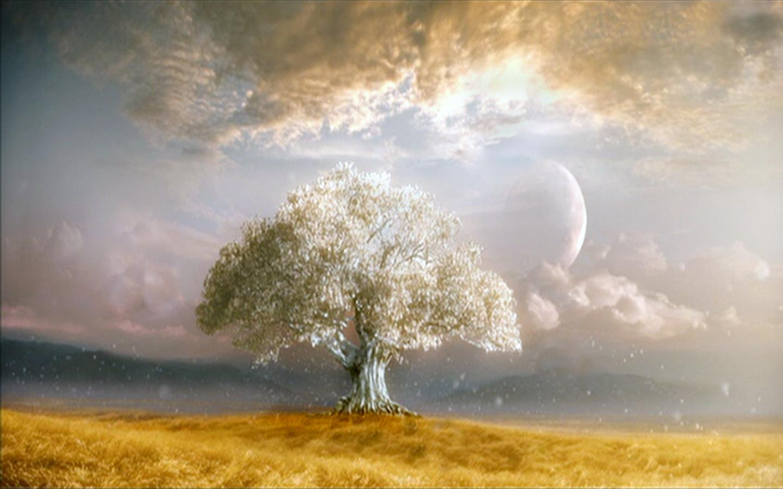 1440x900 Tree of Life Wallpaper Download 1440x900