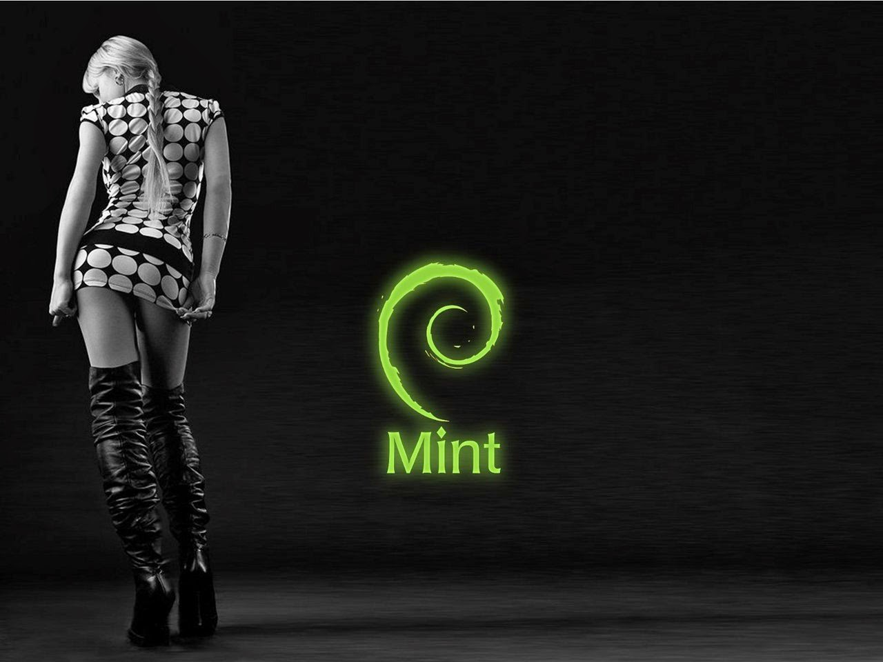 Linux Mint HD Wallpapers HD Wallpapers 1280x960