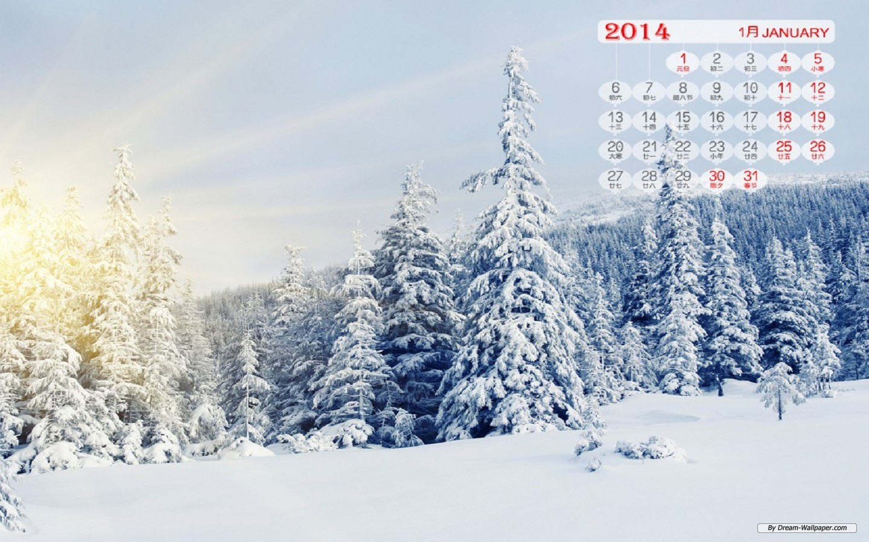 dream wallpapercomart wallpaperjanuary 2014 calendar wallpaper 1440x900
