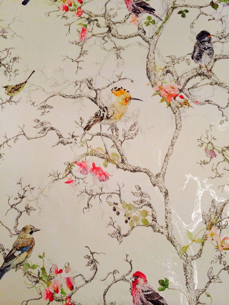 wallpaper birds I love this one New house ideas Pinterest 736x981