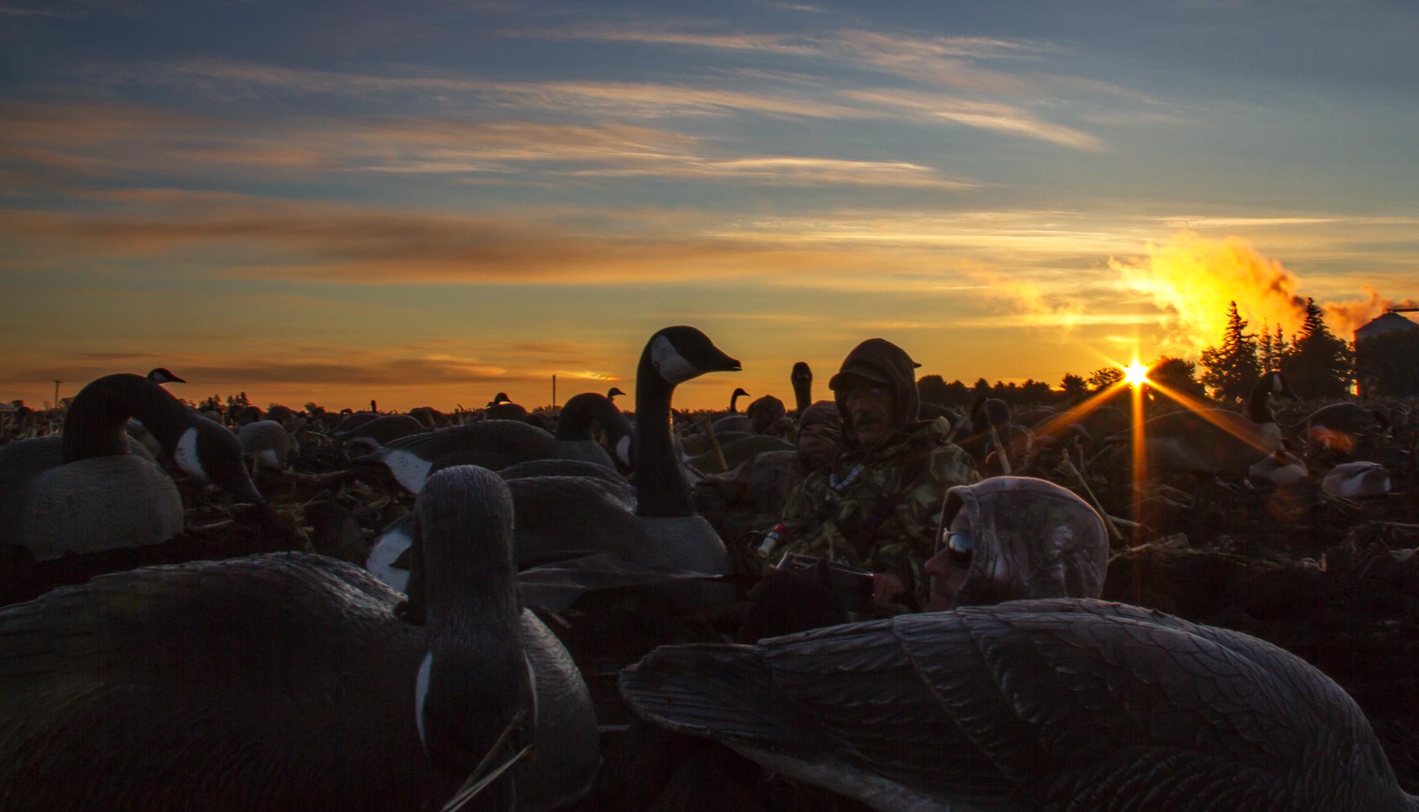 Duck Hunting Desktop Wallpaper Owatonna minnesota goose hunt 2048x1172