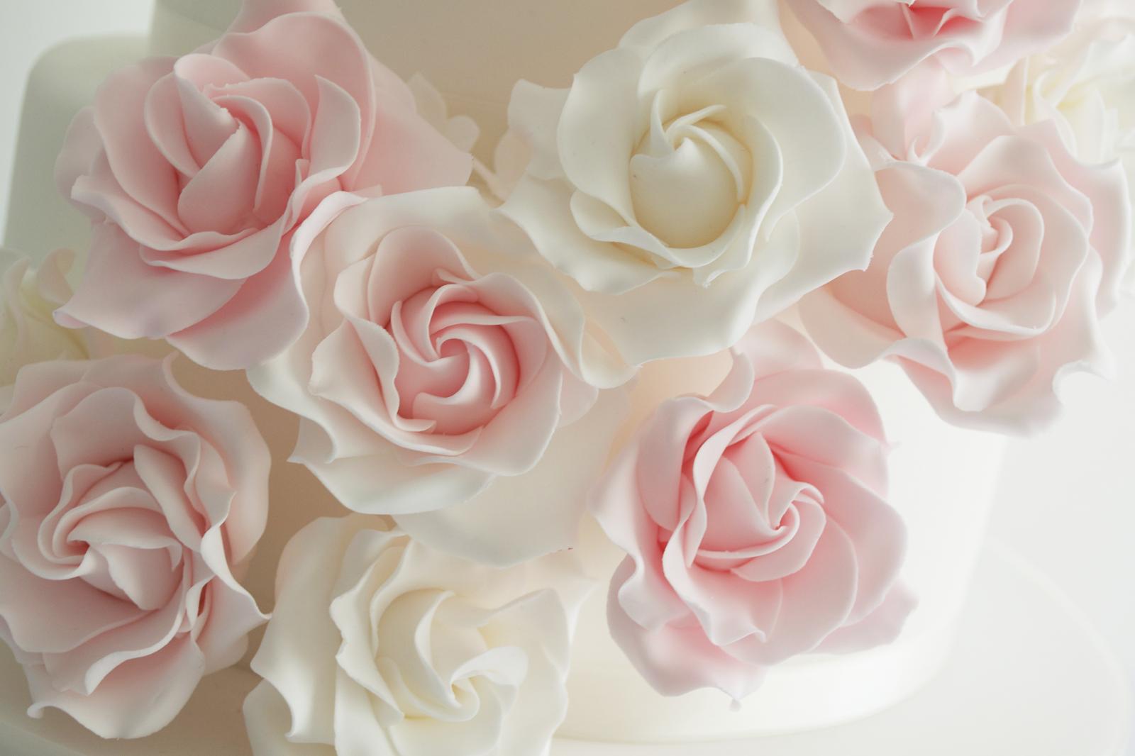 white wallpaper with pink roses wallpapersafari
