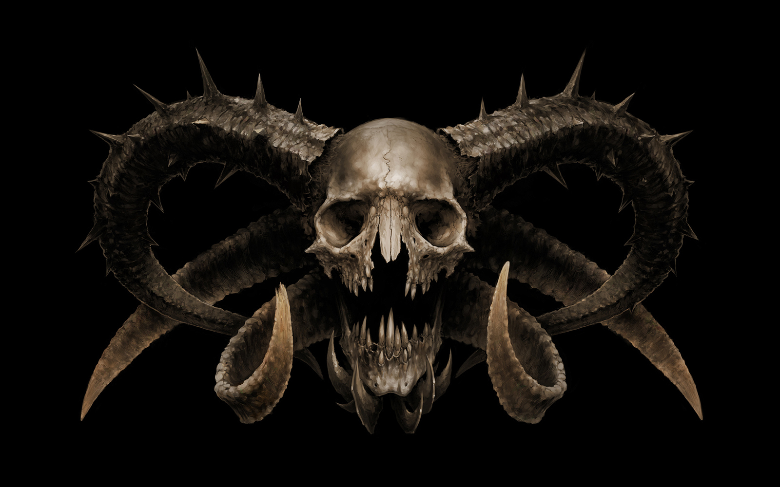 Skull Wallpapers   Desktop Backgrounds 1600x1000