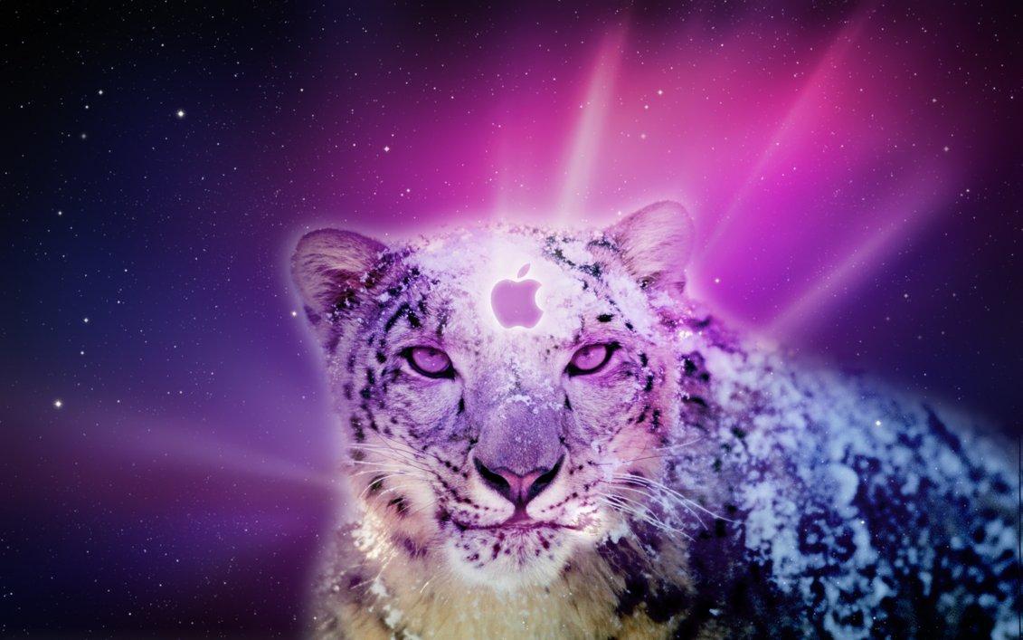 Leopard Backgrounds Mac wallpaper Leopard Backgrounds Mac hd 1131x707