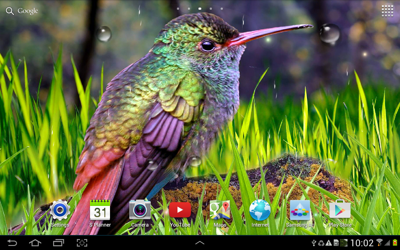 Hummingbirds Live Wallpaper   Android Apps on Google Play 1280x800