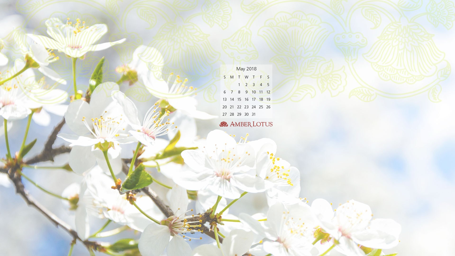 Desktop Wallpaper Calendar May 2018 to Download   Amber 1920x1080