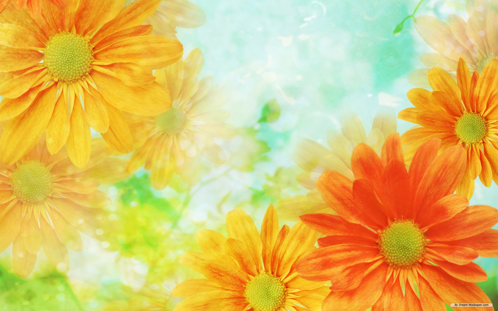 Wallpaper   Flower wallpaper   Cg Flowers wallpaper 1920x1200