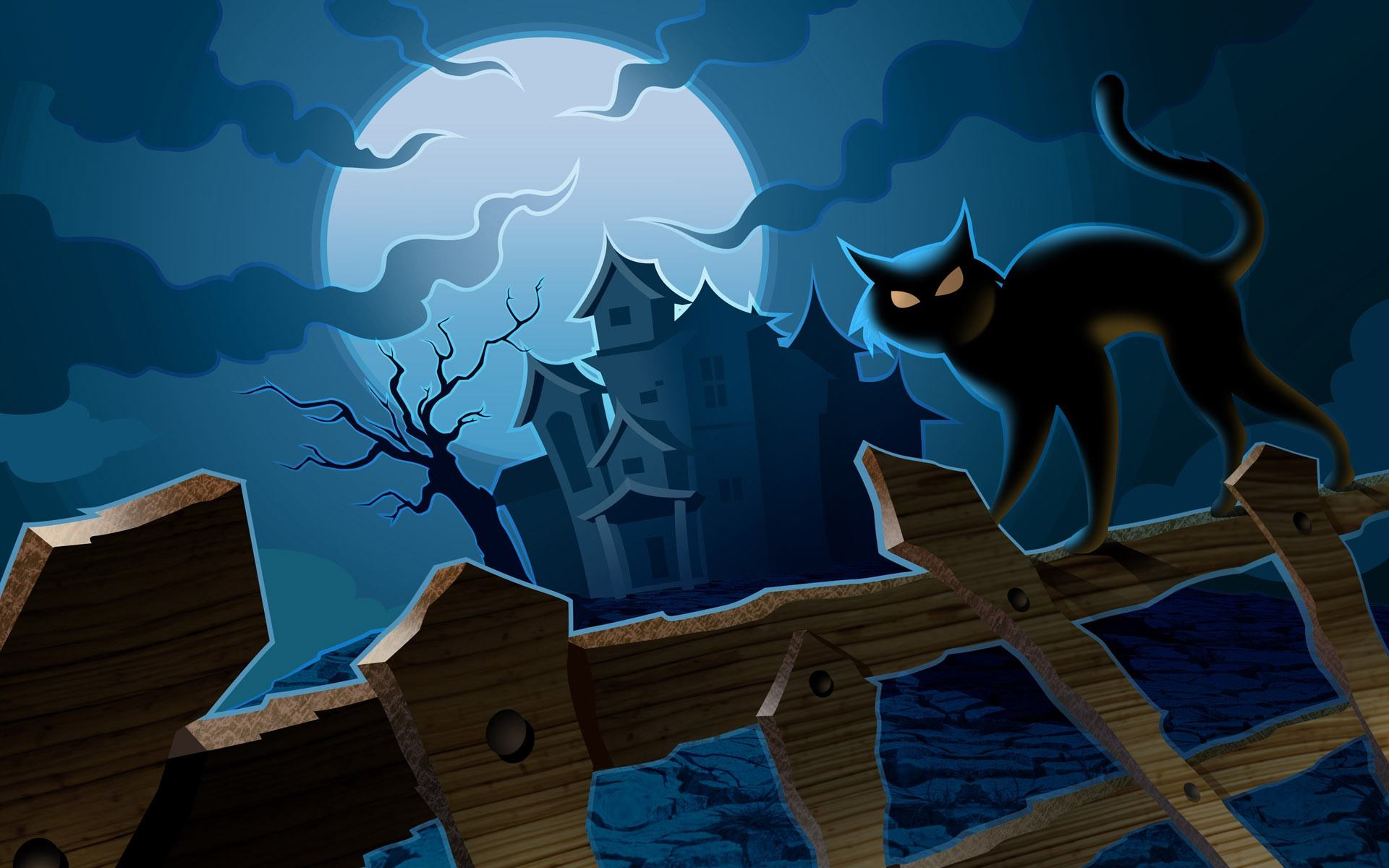 Haunted House Cat Wallpaper Holidays HD Wallpapers Backgrounds 1920x1200