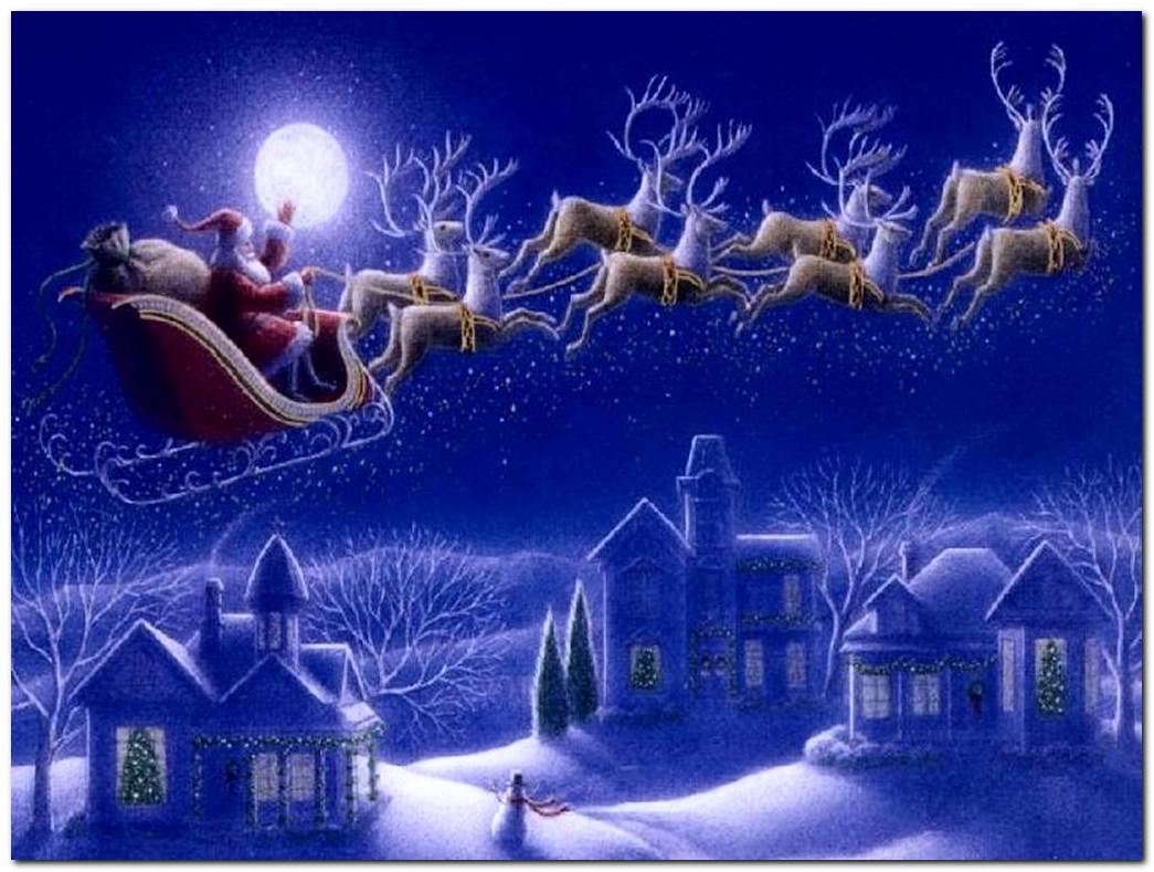 Santas REINDEER get clean bill of health from AVMA Natural Unseen 1045x789