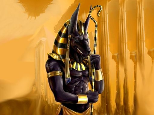 God wallpapers to your cell phone   anubis egypt god   19457495 510x383