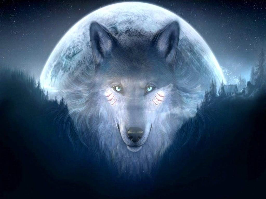 Cool Wolf Wallpaper Light