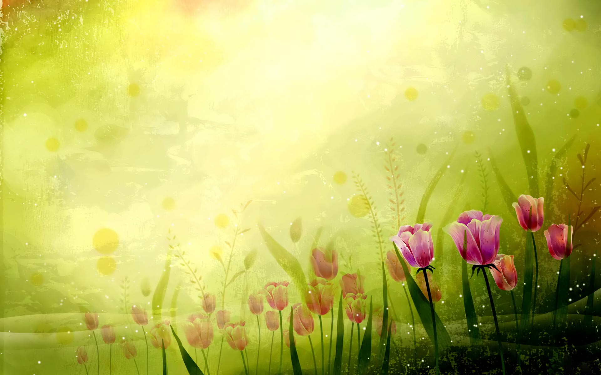 HD Wallpaper Themes Fabulous tulips widescreen wallpaper 1920x1200
