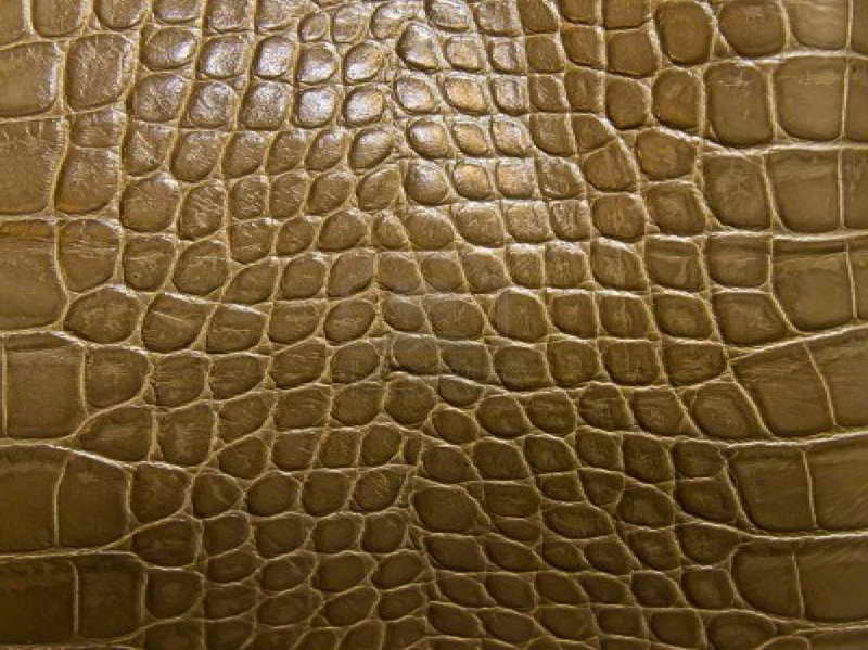Photos of the Decorating with the Crocodile Print Wallpaper for Room 800x599
