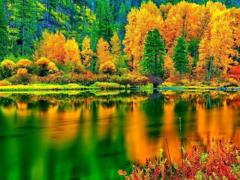 Breathtaking autumn colors HD desktop wallpaper ...