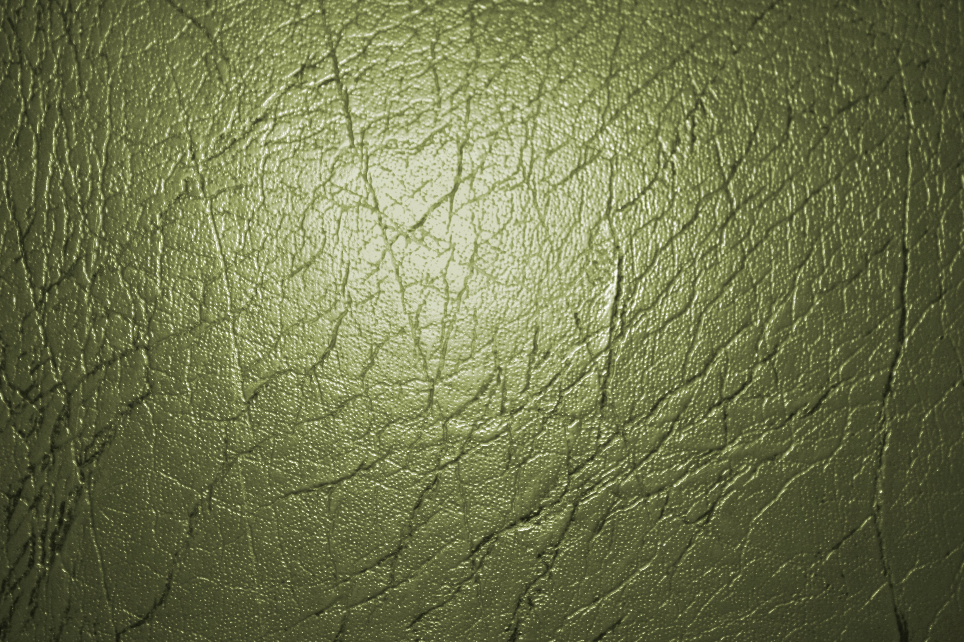 Olive Green Leather Texture Picture Photograph 3888x2592
