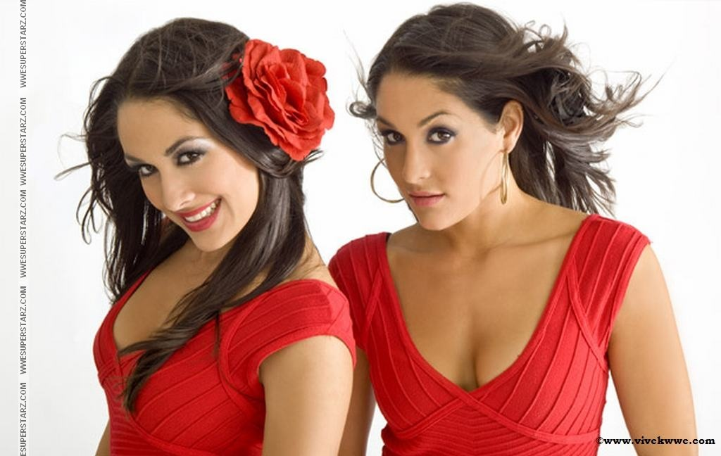 THE DIVAS The Bella Twins Brie Bella Nikki Bella 19 IUNIE 2013 1024x648