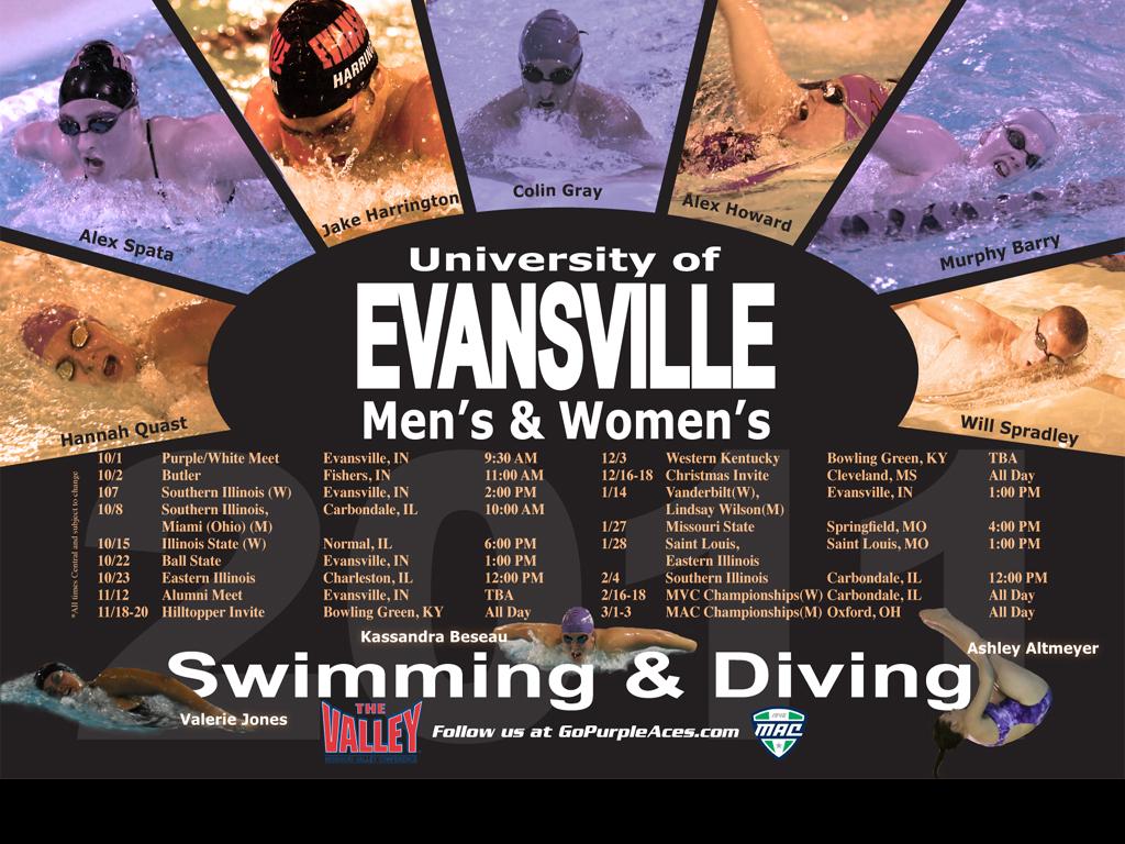 Downloadable Desktop Wallpaper   University of Evansville Athletics 1024x768