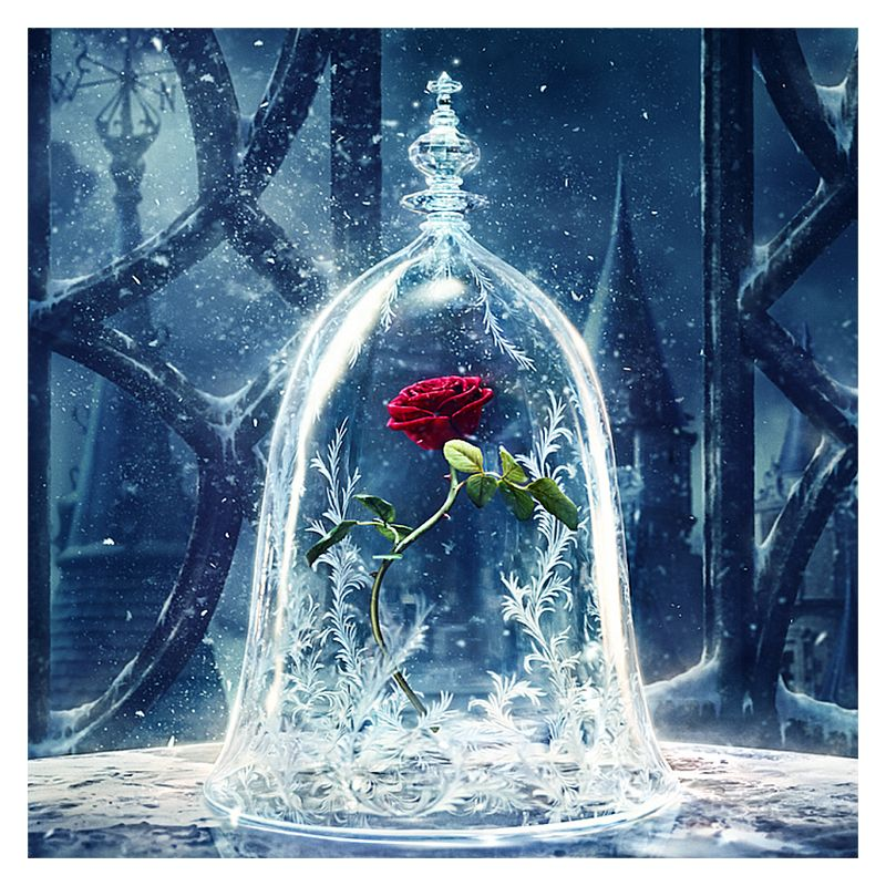 [24+] Beauty And The Beast Rose Wallpapers On WallpaperSafari