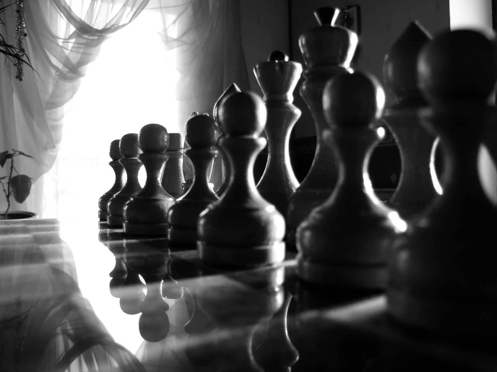 Chess Knight Wallpaper Hd