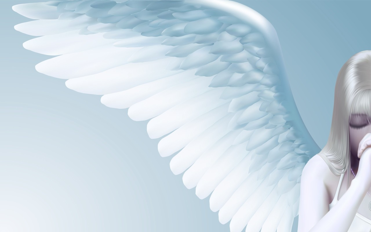 angel wings   Angels Wallpaper 25201950 1280x800