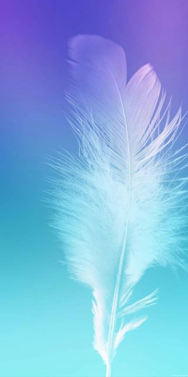 Pin by Ashley A on Feathers Samsung galaxy wallpaper Screen 640x1280