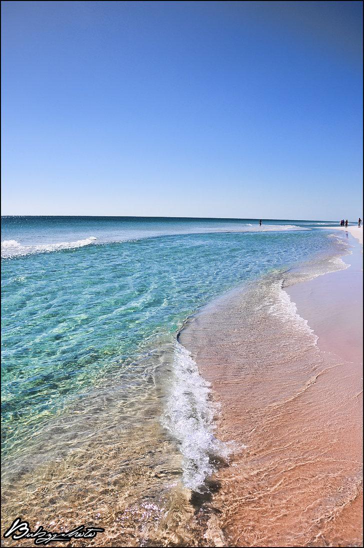 Amazing Journey Inc, Pensacola, FL 32501-1403 | - Yellowbook