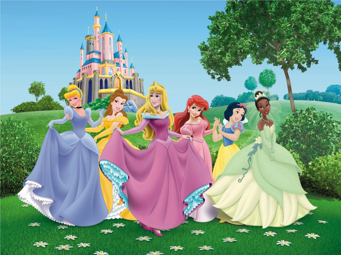 Wall mural wallpaper Disney princesses princess photo 360 cm x 270 cm 1335x1000