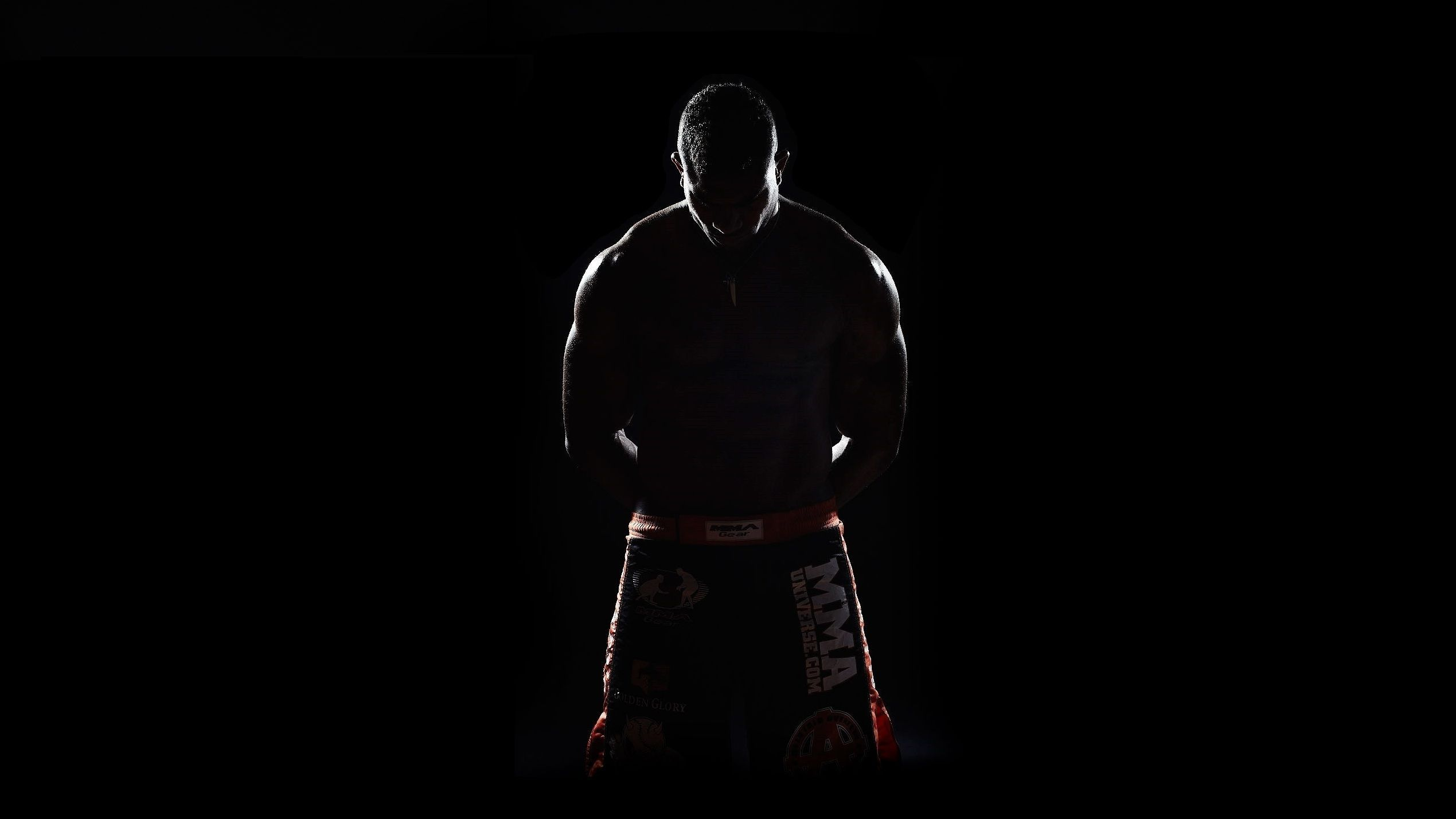 MMA Wallpapers   Top MMA Backgrounds   WallpaperAccess 2539x1428