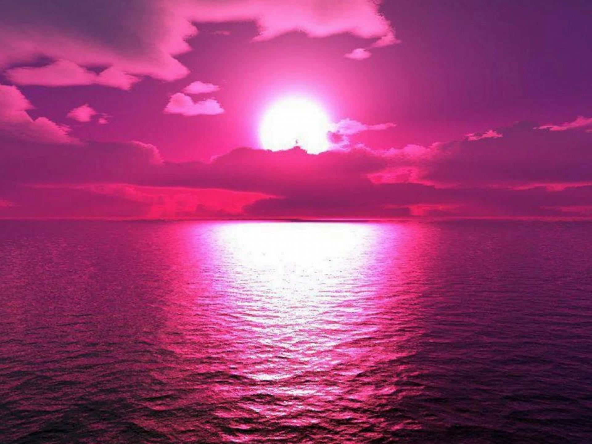 Hot Pink Desktop Wallpaper wwwgalleryhipcom   The 1920x1440