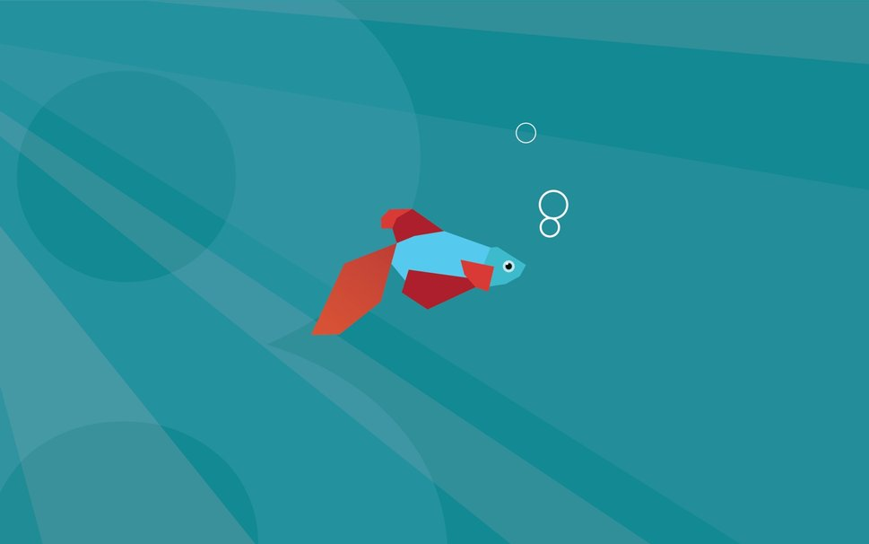 Windows 8 fish default minimal wallpaper   ForWallpapercom 969x606