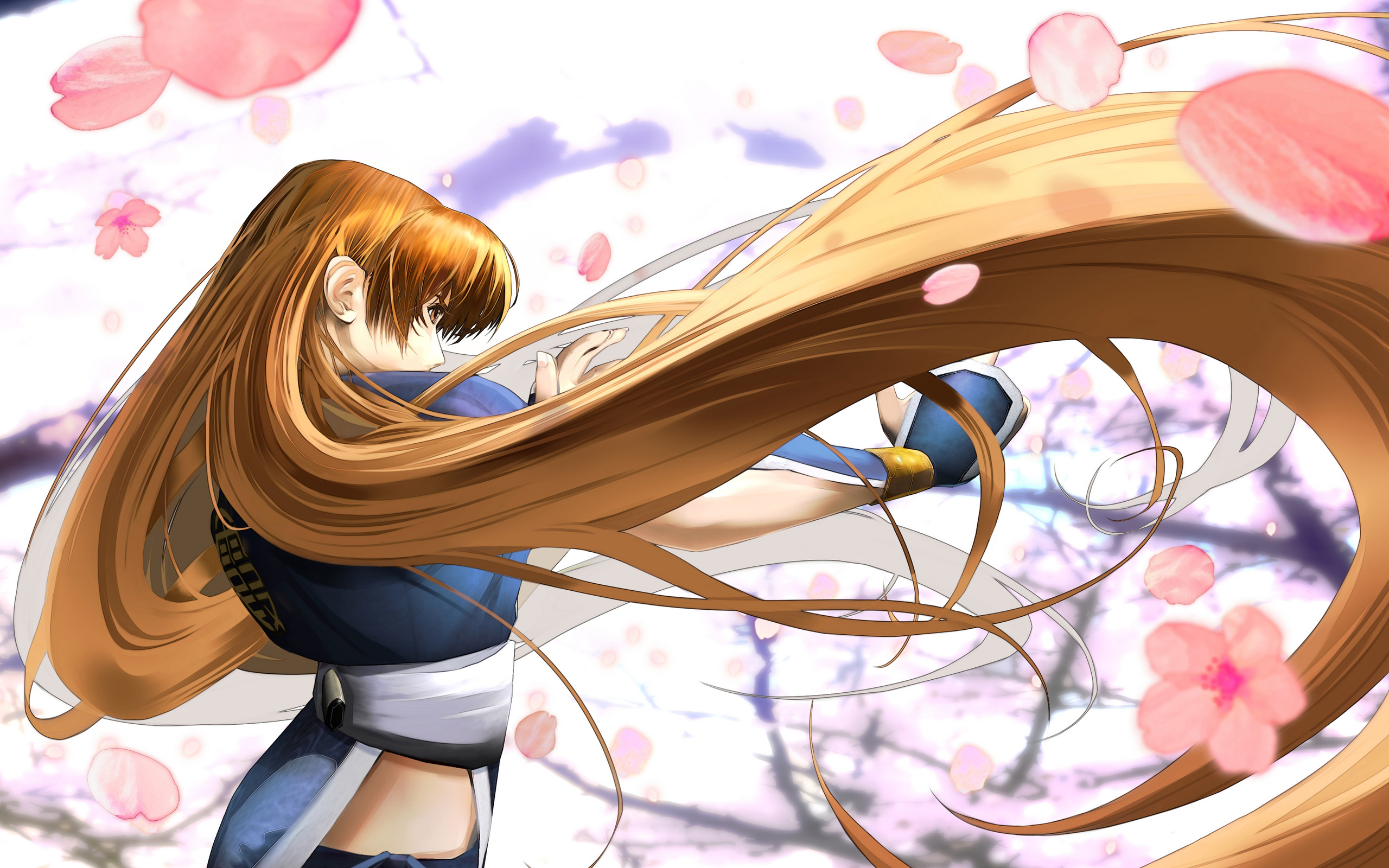 Kasumi   Dead or Alive Dimensions   Wallpaper   Dead or Alive Photo 2560x1600