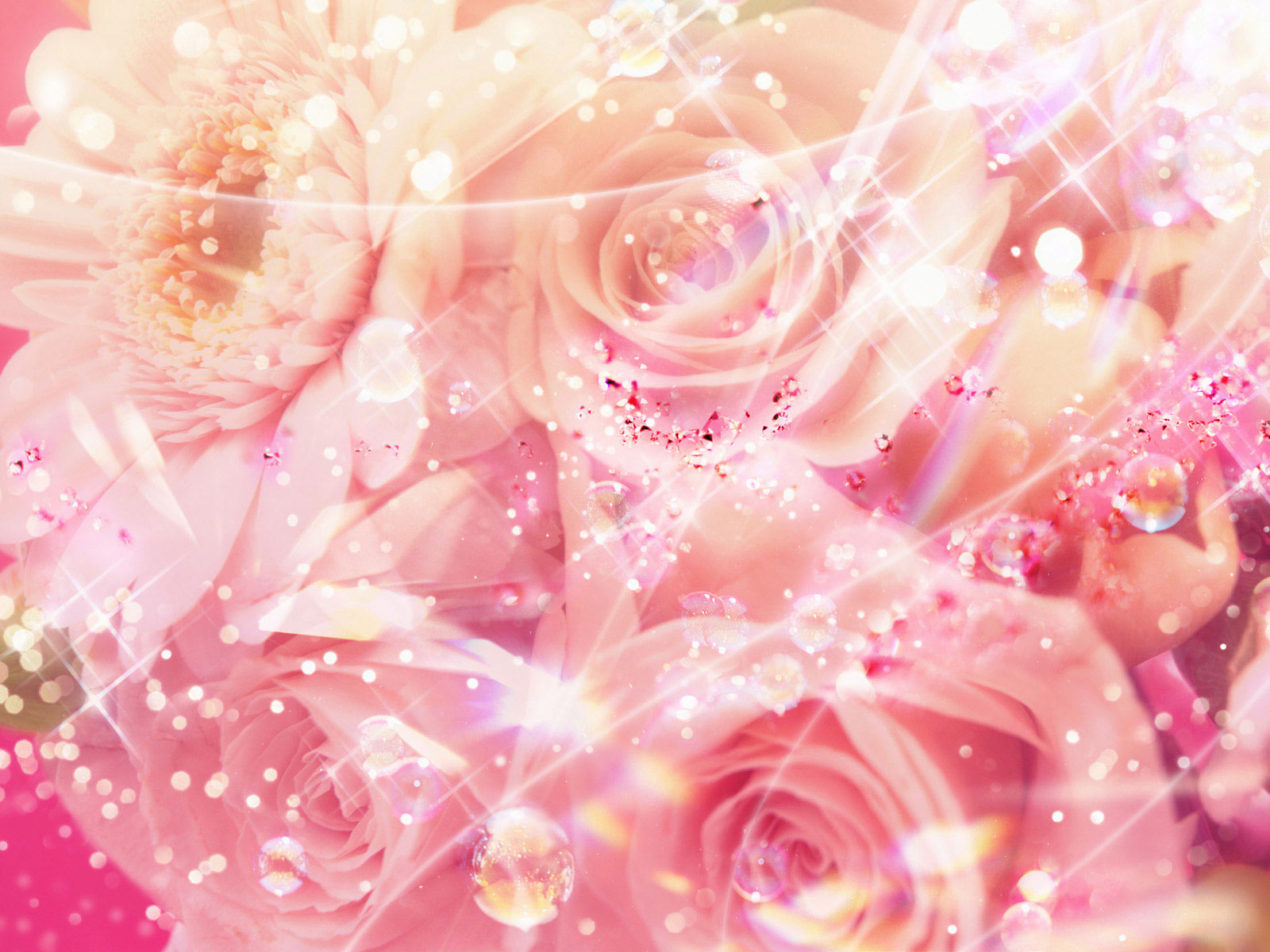 Pretty Pink Roses Wallpaper   Pink Color Photo 34590749 1600x1200