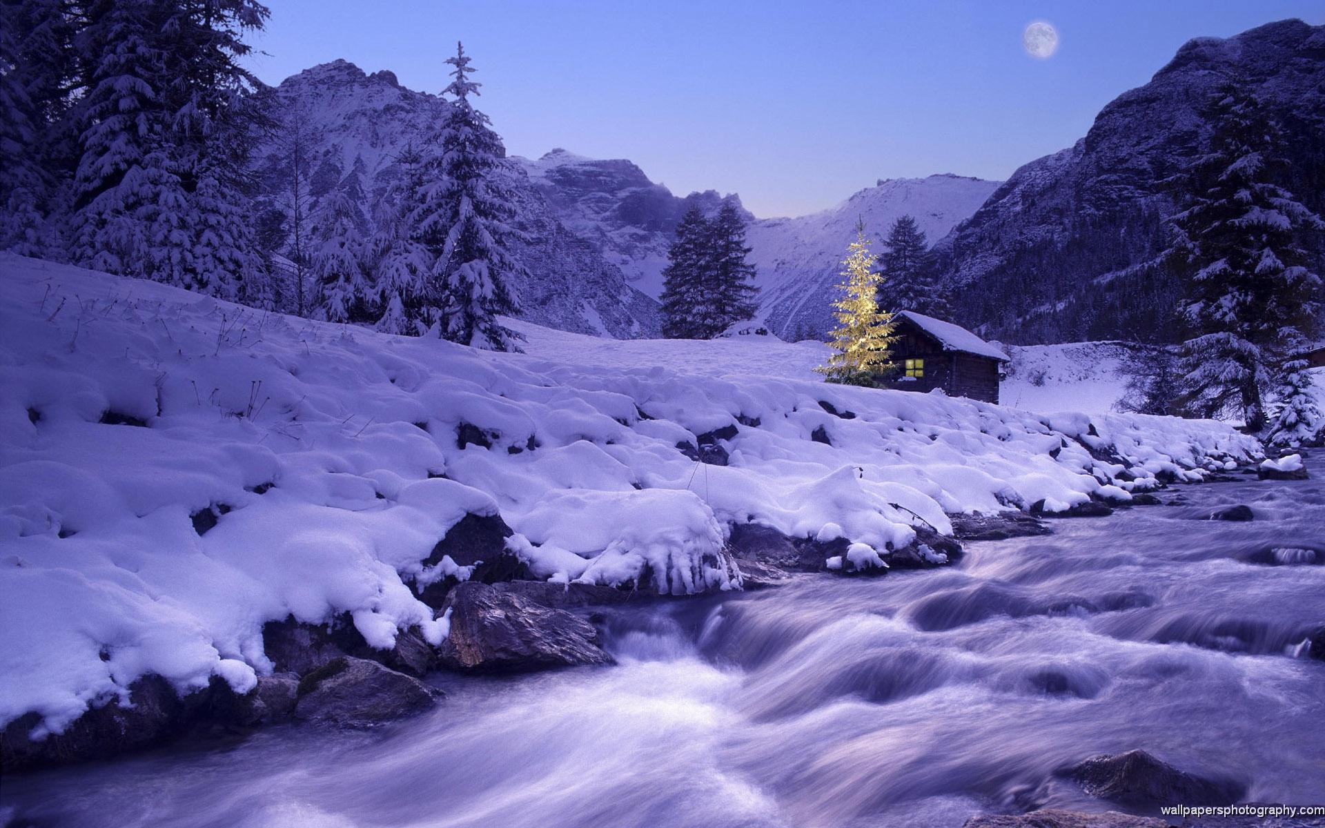 Snow Scenes Wallpaper 1920x1200