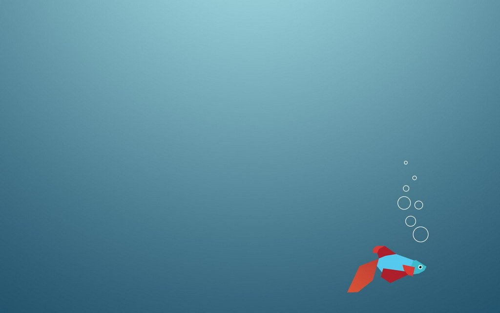 Windows 8 Stock Fish Wallpaper for Android - Android Live Wallpaper ...