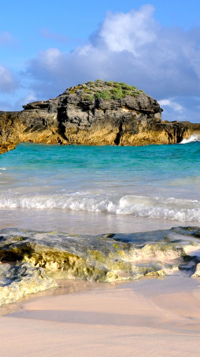 Wallpaper Horseshoe Bay Beach Bermuda Best beaches of 640x1138