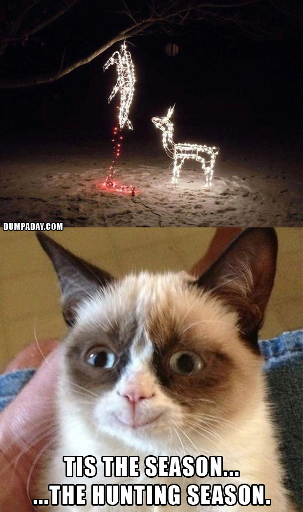 grumpy cat christmas funny christmas lights what makes grumpy cat 620x1047