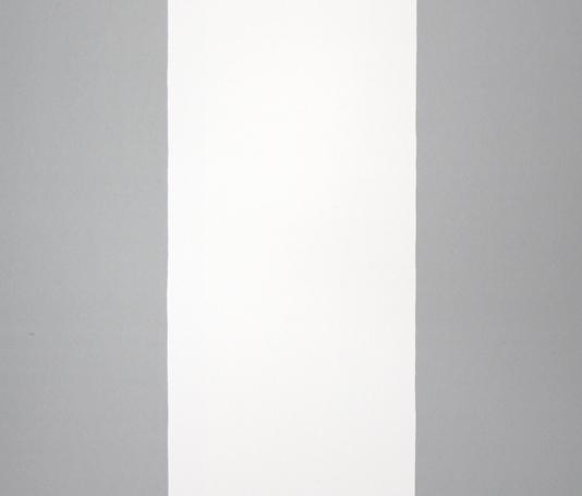 Magnus Stripe Wallpaper Grey and white wide striped wallpaper 534x455