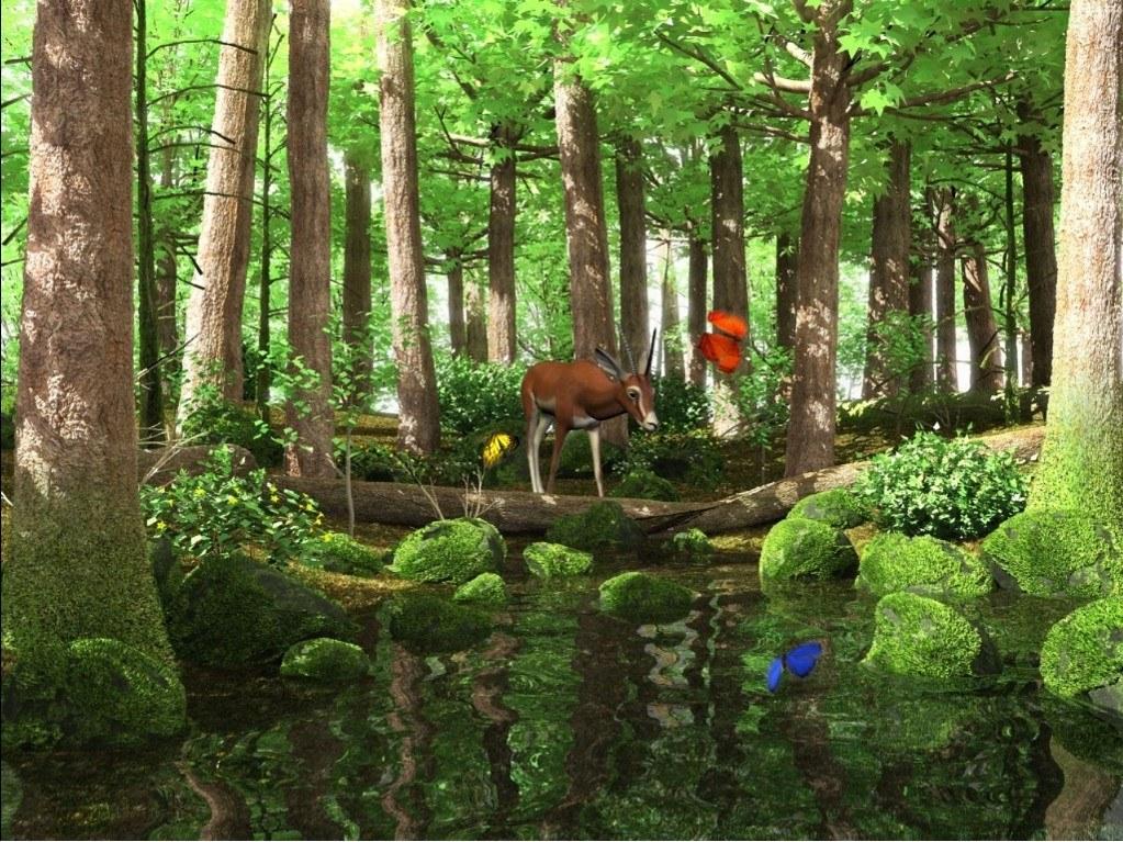 Spring Butterflies 3D Screensaver A deer drinking water from the 1023x767