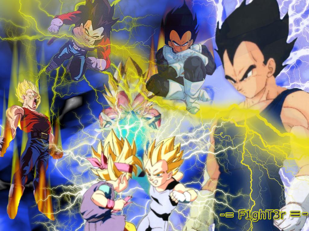 thunder vegeta   Dragon Ball Z Wallpaper 11393320 1024x768