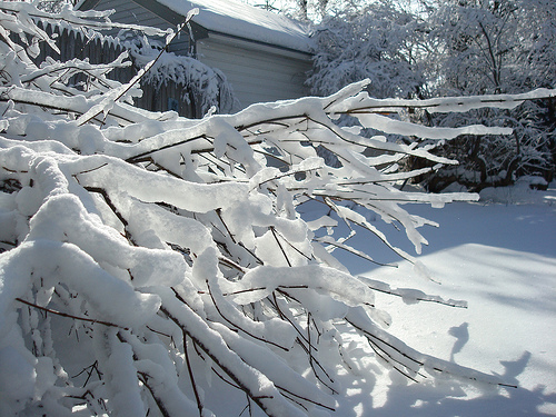 of snow but it is too pretty outside to feel that way It is warm 500x375